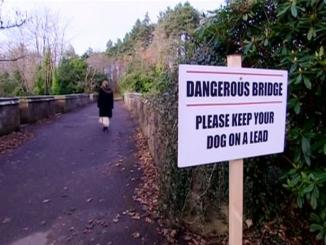 Dogs Suicide, above 600 dogs jumped off haunted bridge Scotland