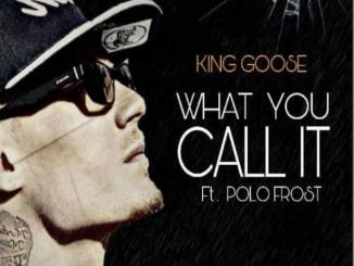 Fact check: King Goose what ya call it ft. polo frost no release