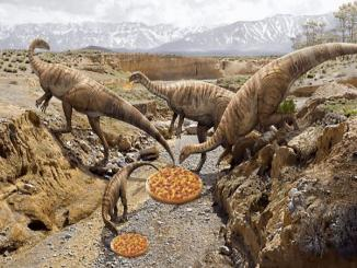 Did Dinosaurs Extinction Was Because They Liked Pineapple On Pizza