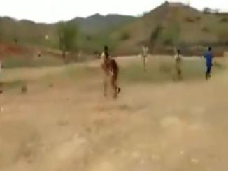Khaleej Mag share fake video of protester burnt alive in Srinagar