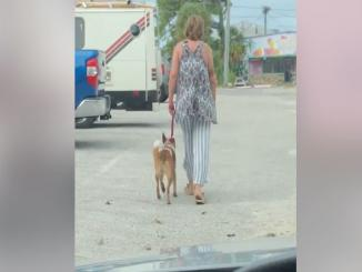 Video of women chocking a dog