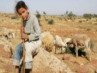 20 years ago picture viral as shepherd education minister, France