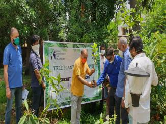 Sukrit Foundation Tree Plantation campaign on World Environment Day